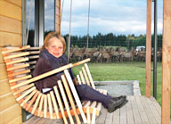 Olivia on a cottage swing with deer in the background